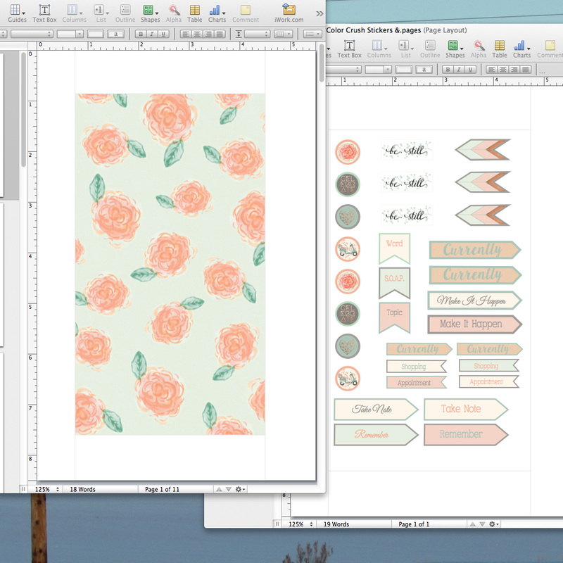 Screen shot of the dividers and stickers for use in my new Color Crush planner